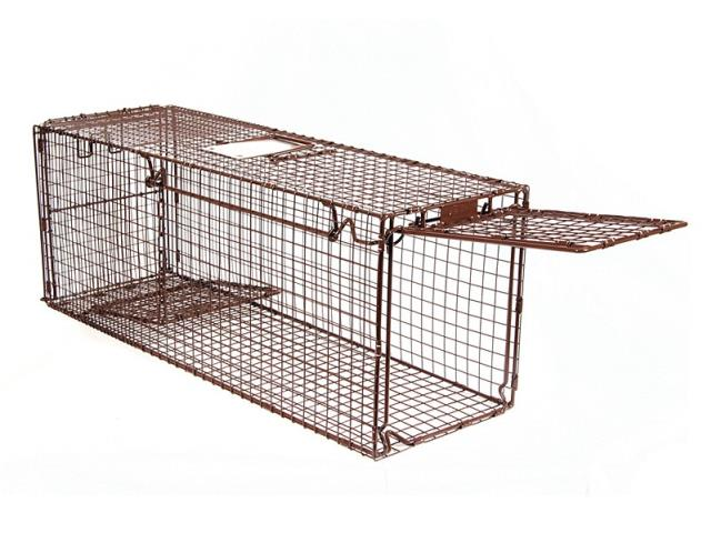 Where to rent Animal Trap in Philadelphia, Allentown PA, Bethlehem PA, and Lehigh Valley PA