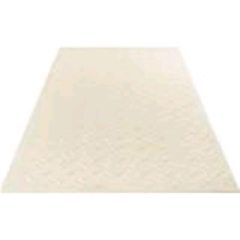 Rental store for Ground Mats White 4 x8  each in Allentown and Bethlehem Pa PA