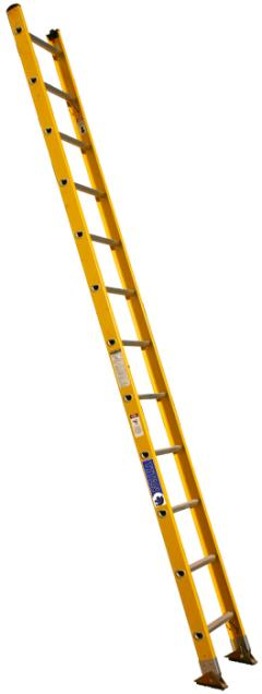 Rental store for 24  Ladder in Allentown PA