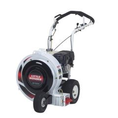Where to rent Leaf Blower, 8hp push in Allentown PA